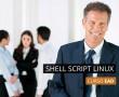 Shell Script Linux (teoria e prática)