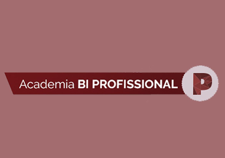 Academia BI – Profissional